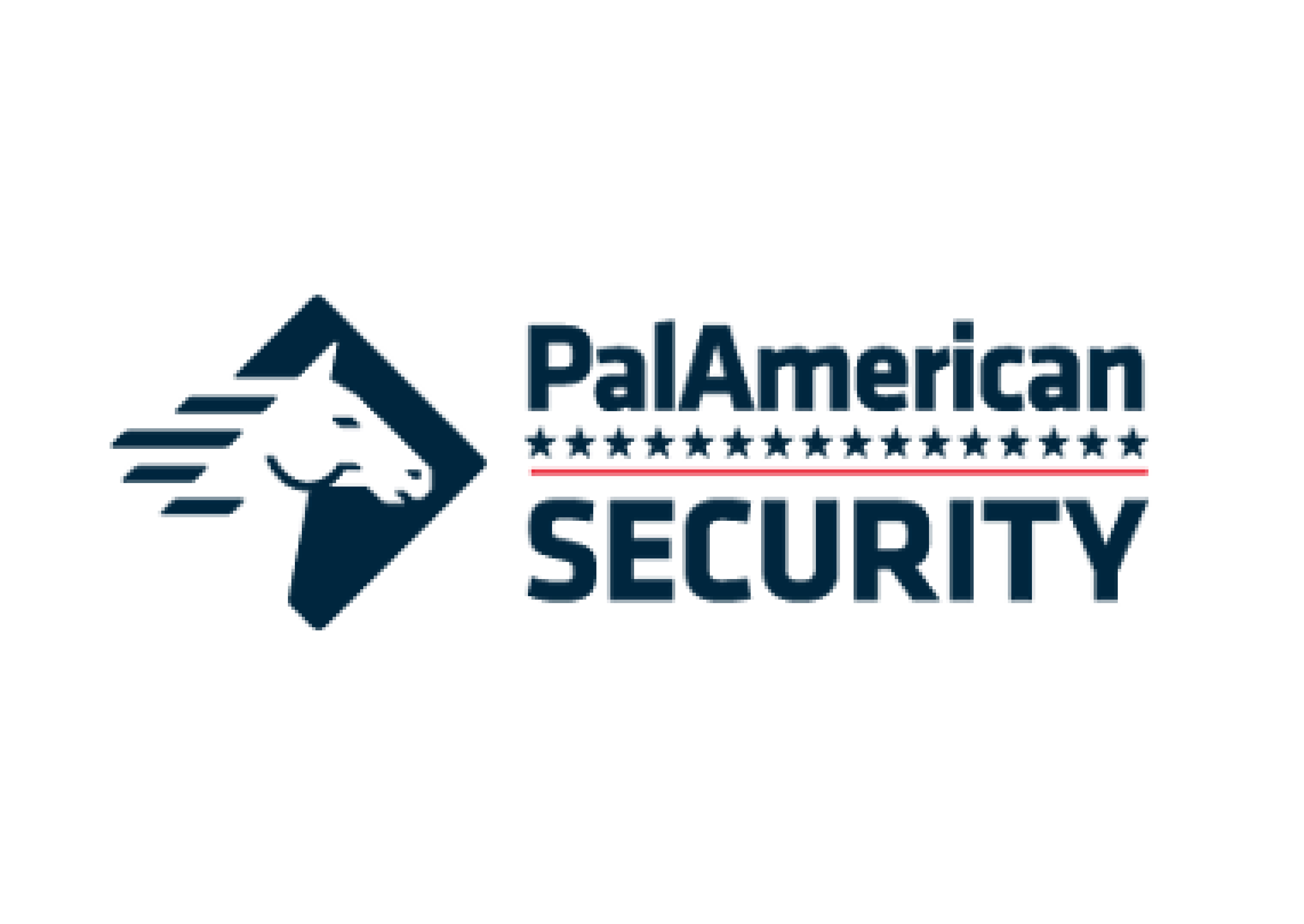 https://paladinsecurity.com/wp-content/uploads/2021/05/PAS-01.png